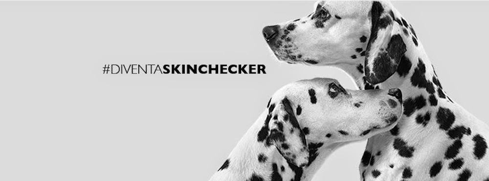 diventaskinchecker1